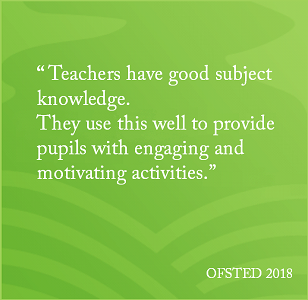 OFSTED 2018 P11